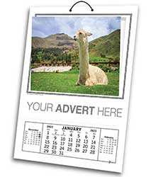 Cal 667 Aston Wallpocket Calendar