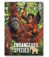 C57 Endangered Species Reeve Advertising Calendar